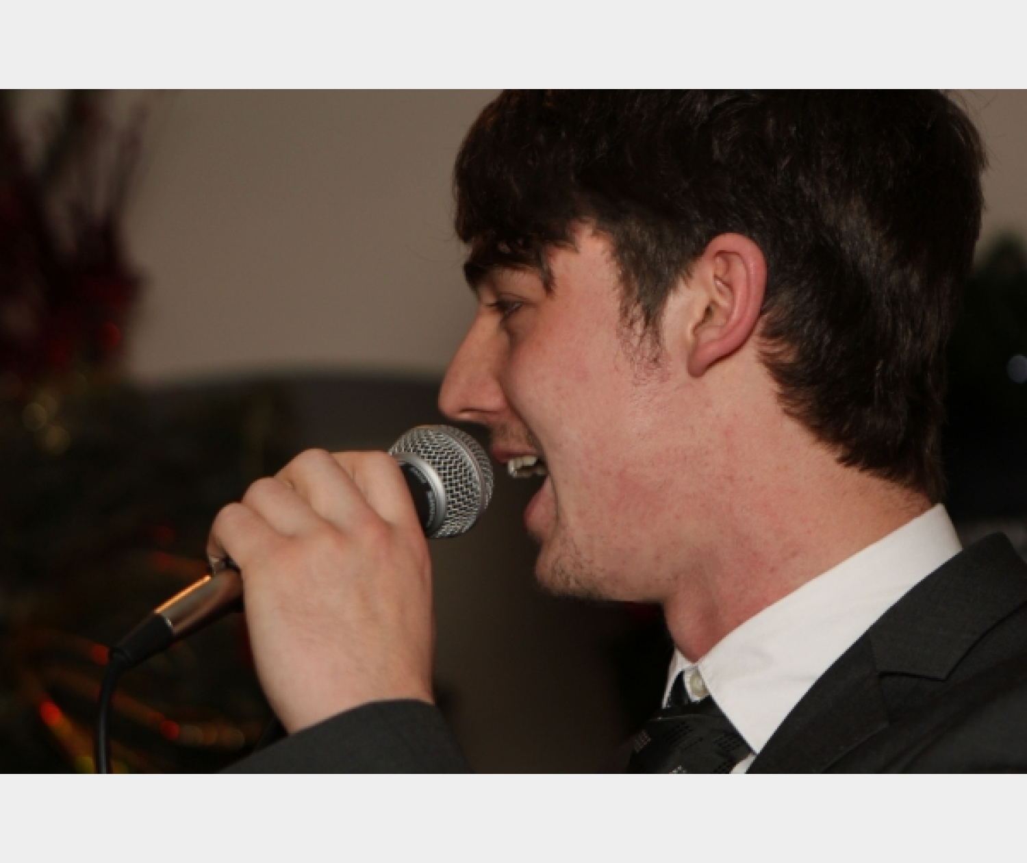 Fantastic Wedding Singer