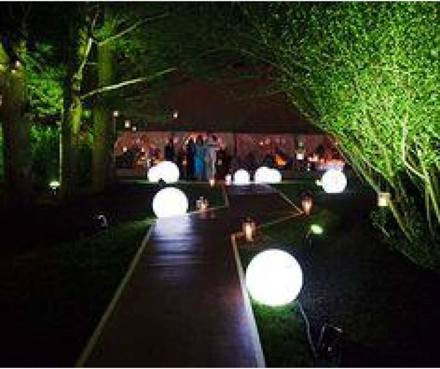 Lighting ideas for wedding
