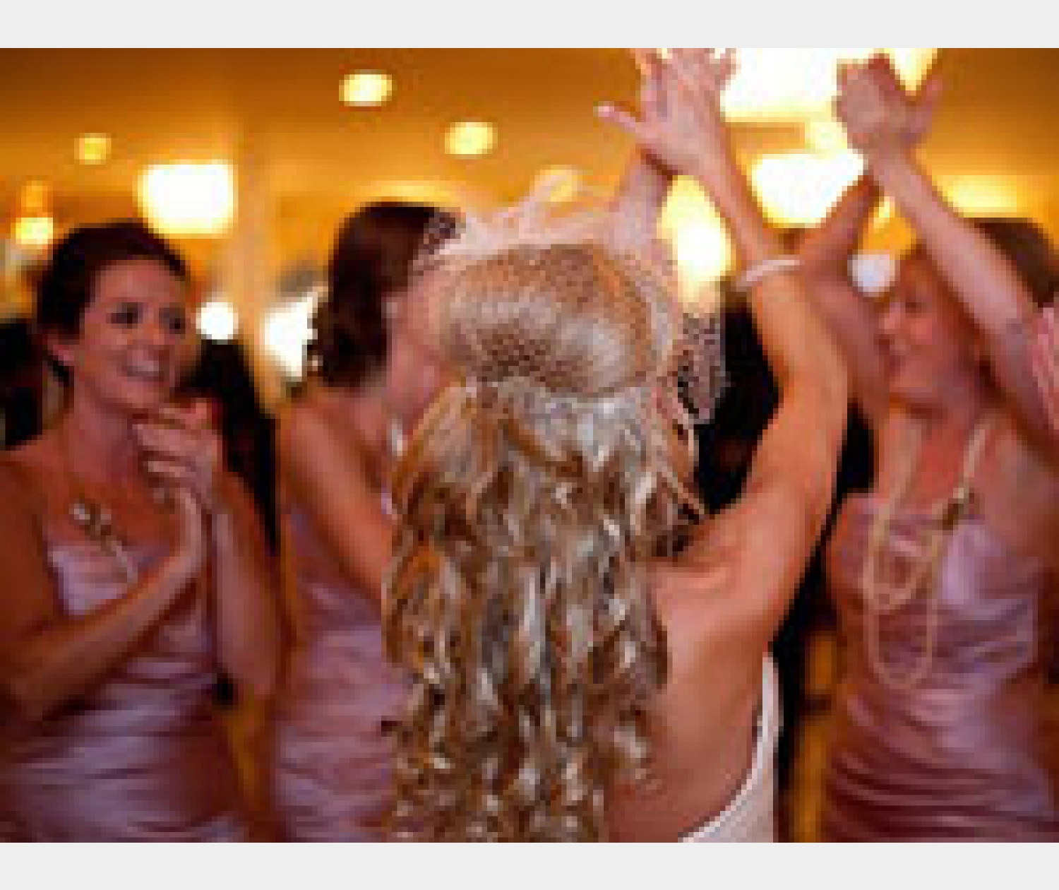amDJsevices provide a specialist wedding DJ service.